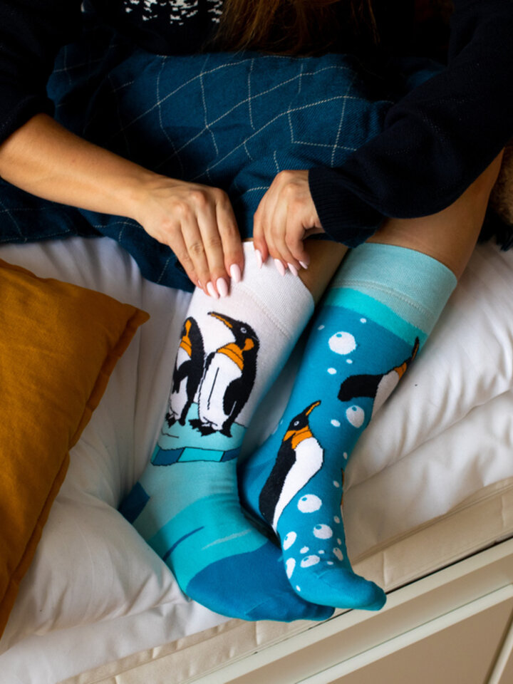 Gift idea Regular Socks Penguins