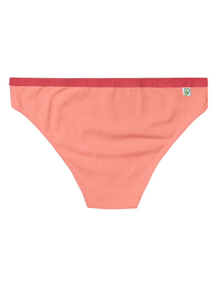 Original gift Peach Orange Women's Briefs