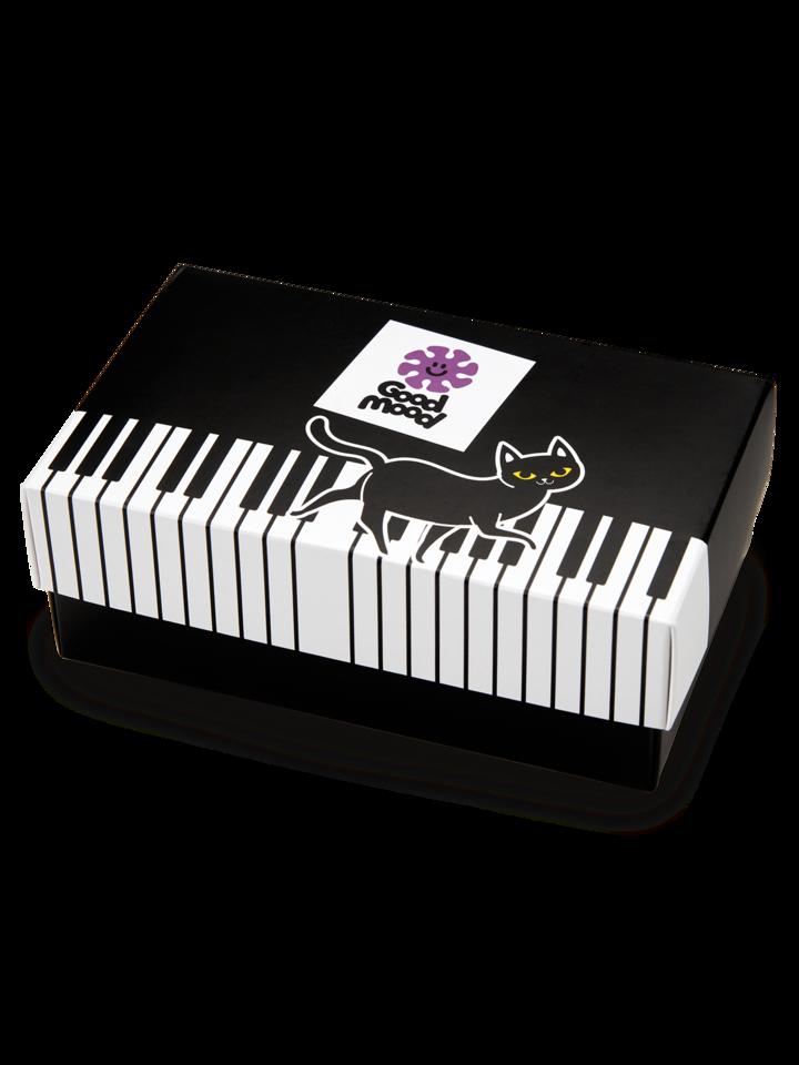 Lifestyle foto Coffret cadeau Chat jouant au piano