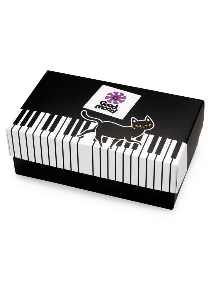 Lifestyle foto Caja regalo Gato pianista