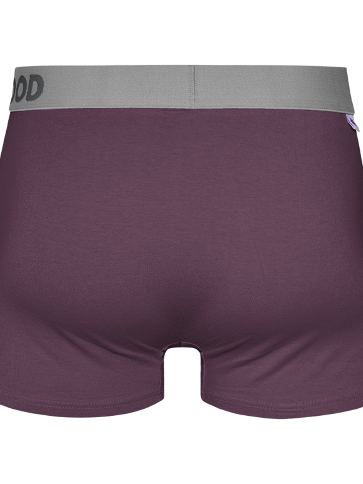 Looking for an original and unusual gift? The gifted person will surely surprise with Violet Men's Trunks