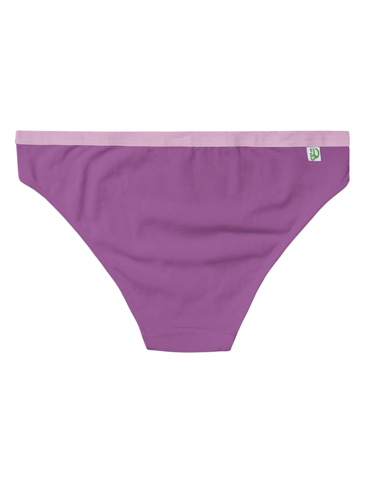 Potešte sa týmto kúskom Dedoles Hyacintovo fialové dámske nohavičky
