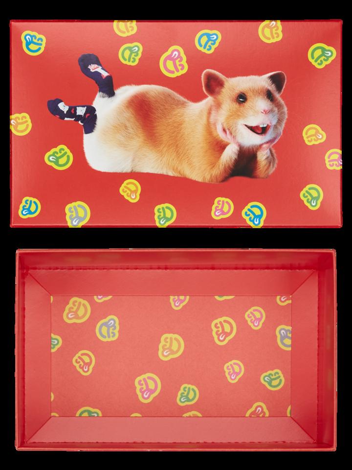 Potešte sa týmto kúskom Dedoles Klasična darilna škatla Dedolesovi hrčki