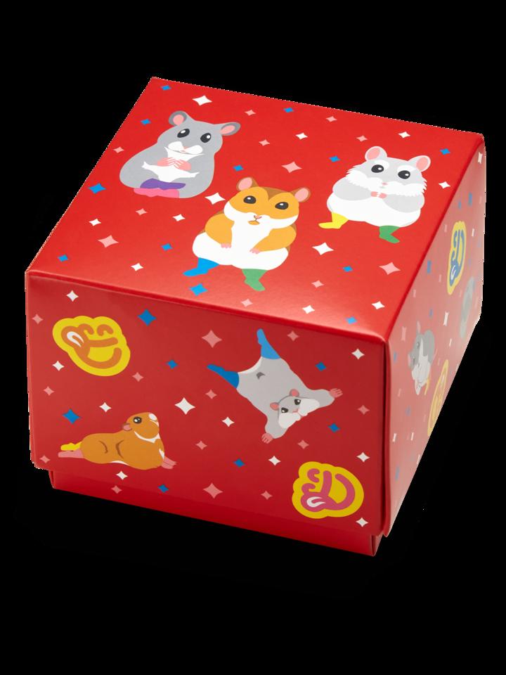 Lifestyle foto Štvorcová darčeková krabička Tancujúce škrečky