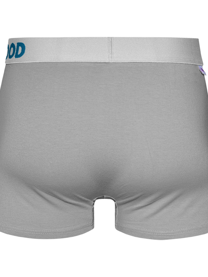 Pre dokonalý a originálny outfit Light grey Men's Trunks