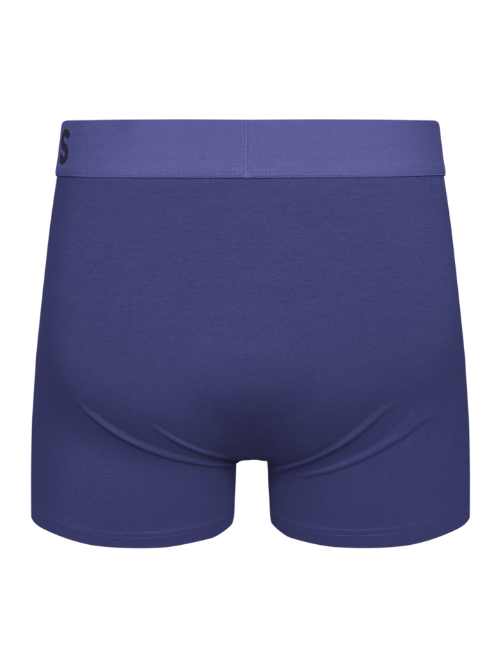 Looking for an original and unusual gift? The gifted person will surely surprise with Clematis Blue Men's Trunks