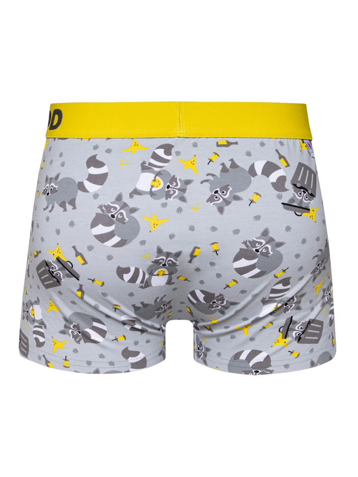 Sale Men's Trunks Racoon