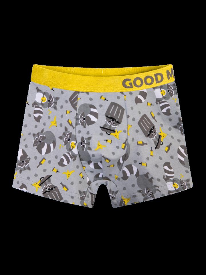 Pre dokonalý a originálny outfit Boys' Boxers Racoon