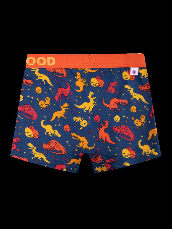 Obrázok produktu Boxers rigolos pour garçons Monde des dinosaures