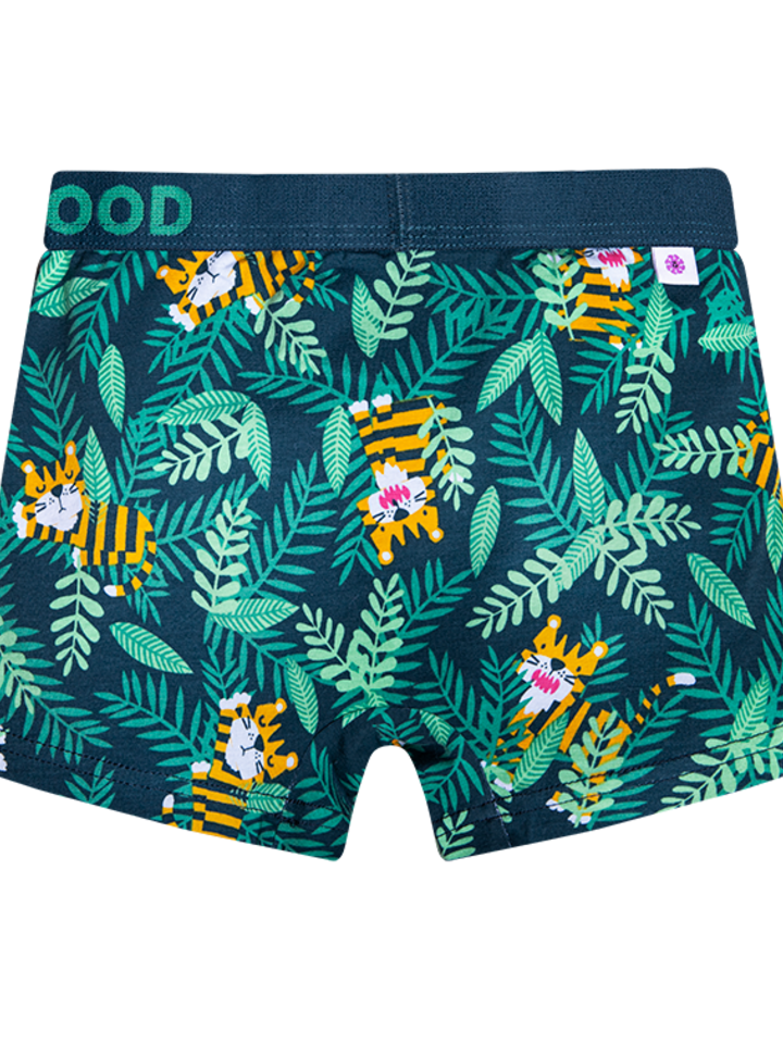 Original gift Good Mood Boy's Trunks Tiger