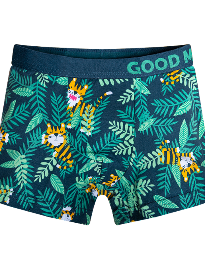 Gift idea Good Mood Boy's Trunks Tiger