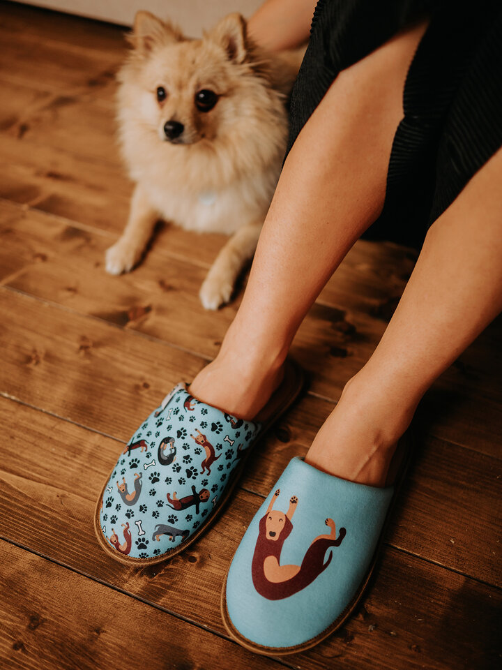 Potěšte se tímto kouskem Dedoles Veselé papuče Jezevčík