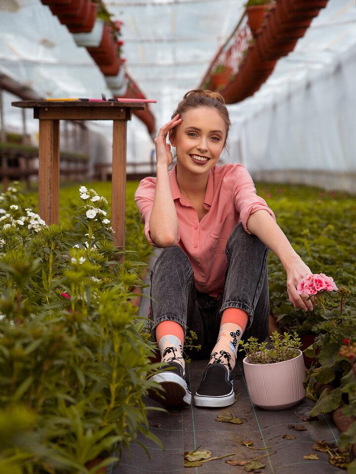 Foto Veselé ponožky Pokojové rostliny