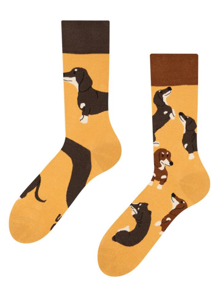Obrázok produktu Vrolijke sokken Teckels