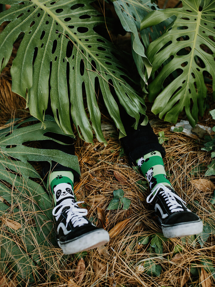 Looking for an original and unusual gift? The gifted person will surely surprise with Regular Socks Panda & Stripes
