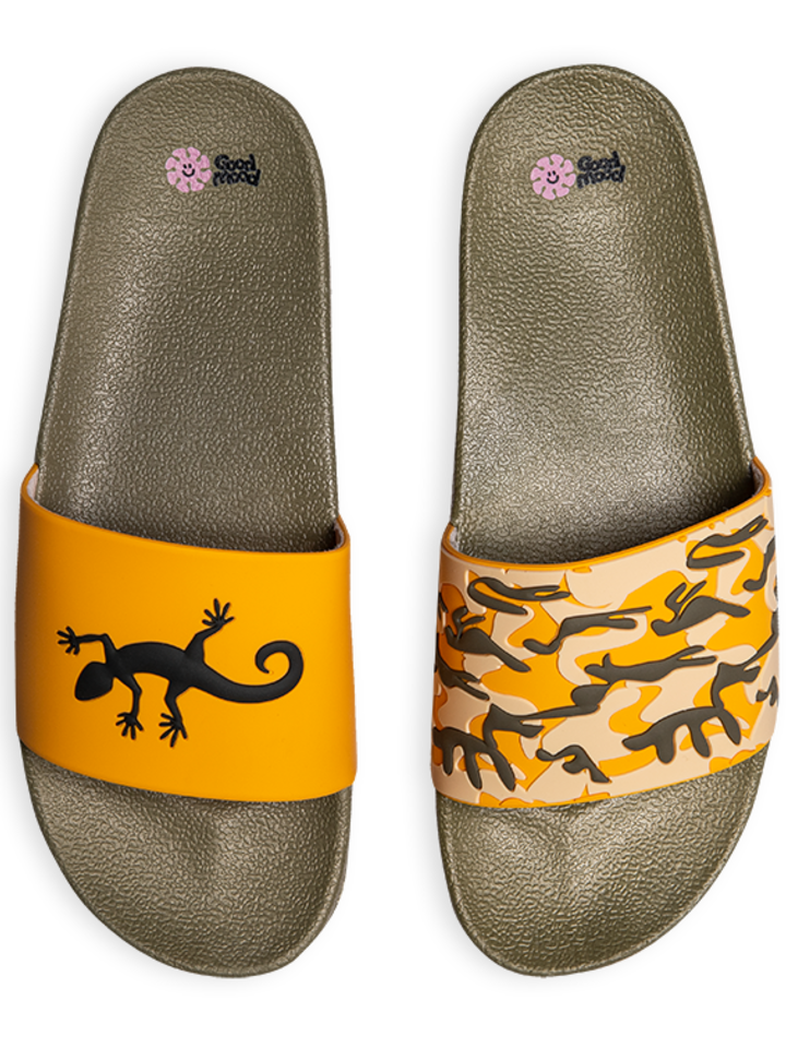 Sale Slides Lizard