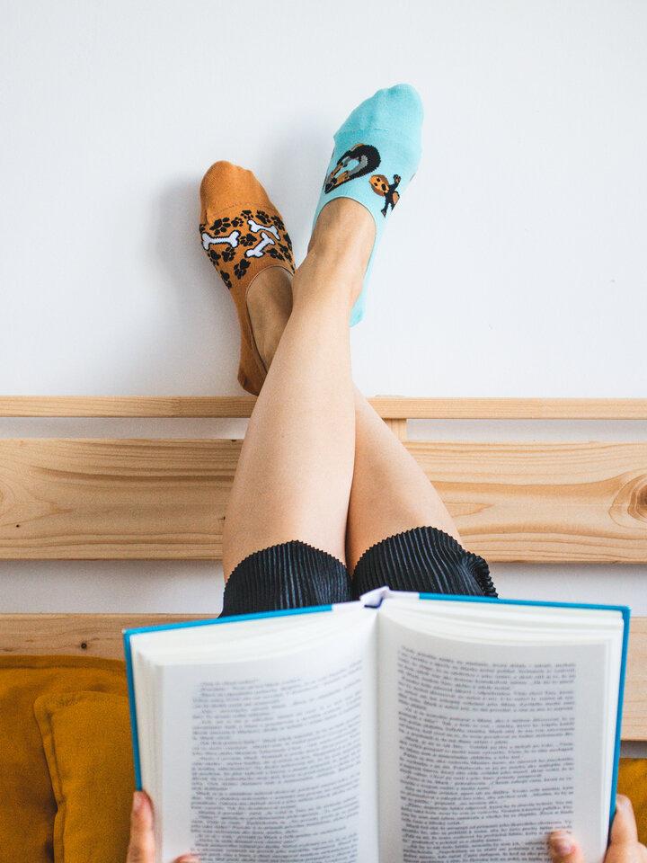 Lifestyle foto Весели невидими чорапи Дакел