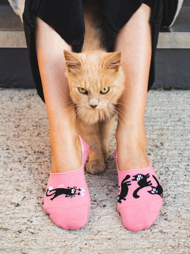 Sale No Show Socks Pink Cats