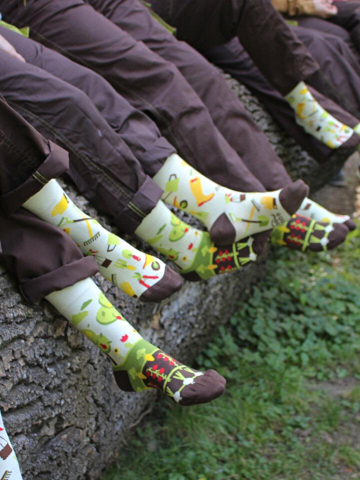 Potešte sa týmto kúskom Dedoles Regular Socks Gardening
