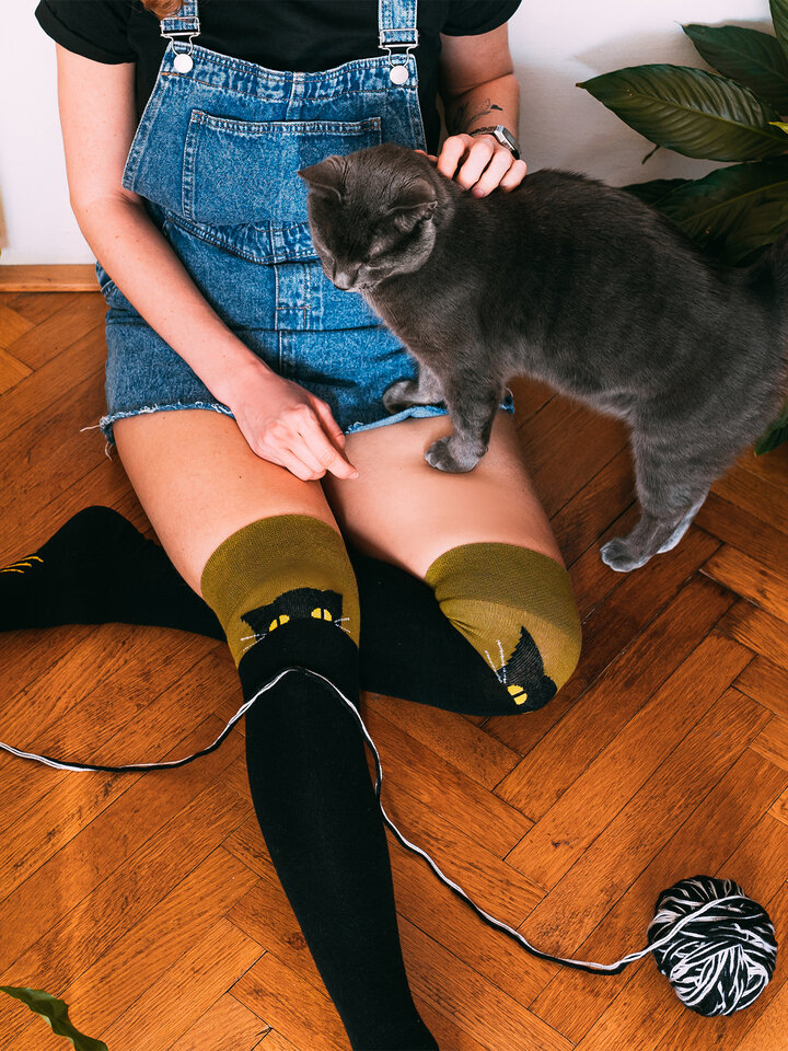 Looking for an original and unusual gift? The gifted person will surely surprise with Over the Knee Socks Cat