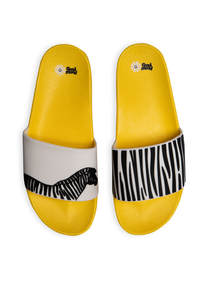 Gift idea Slides Zebra