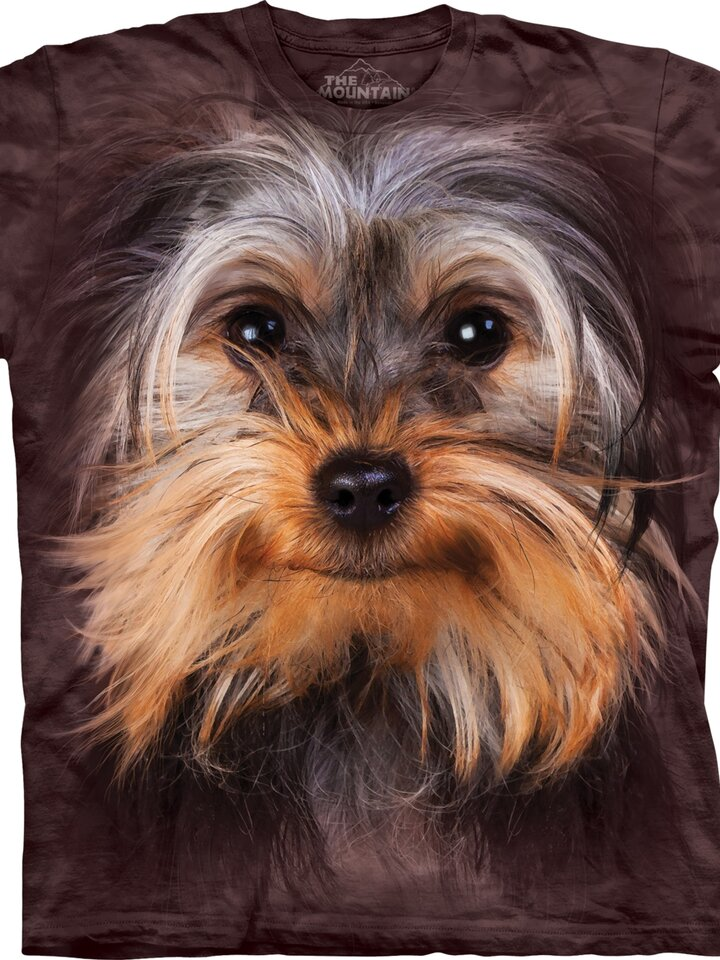 Geschenktipp Kinder T-Shirt Yorkshire Terrier Gesicht
