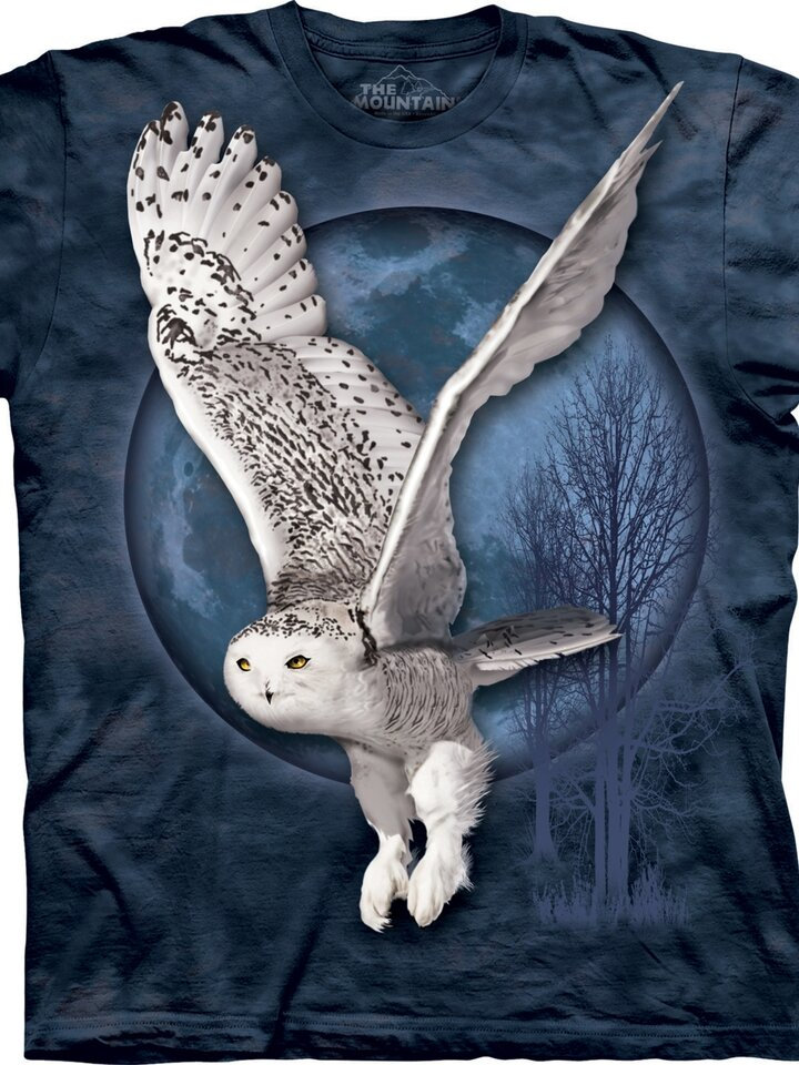 Foto Snow Owl Moon Adult
