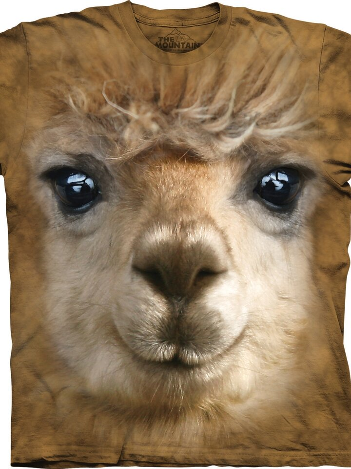 Lifestyle foto Big Face Alpaca Adult