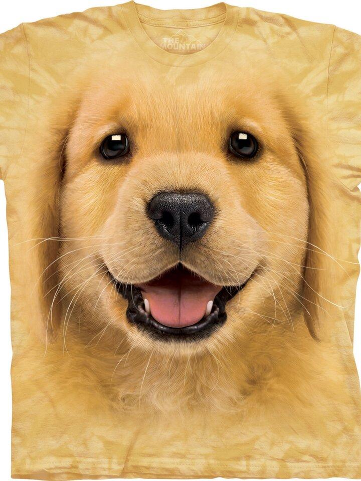 Pre dokonalý a originálny outfit Golden Retriever Puppy