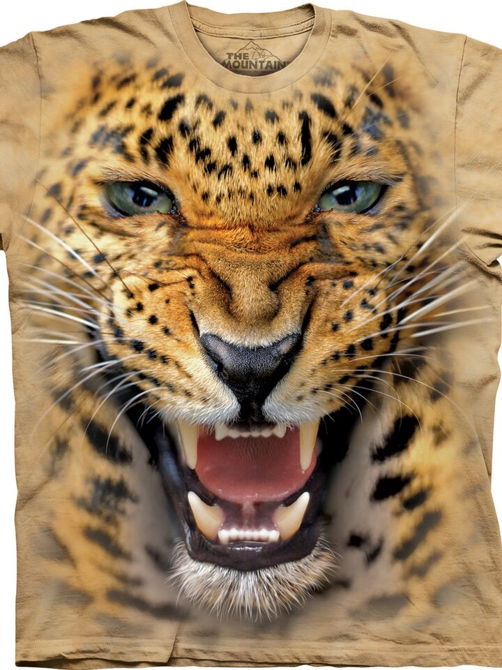 Foto Angry Leopard