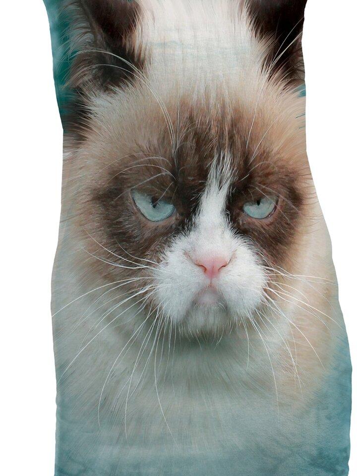 Lifestyle-Foto Minikleid Grämliche Katze