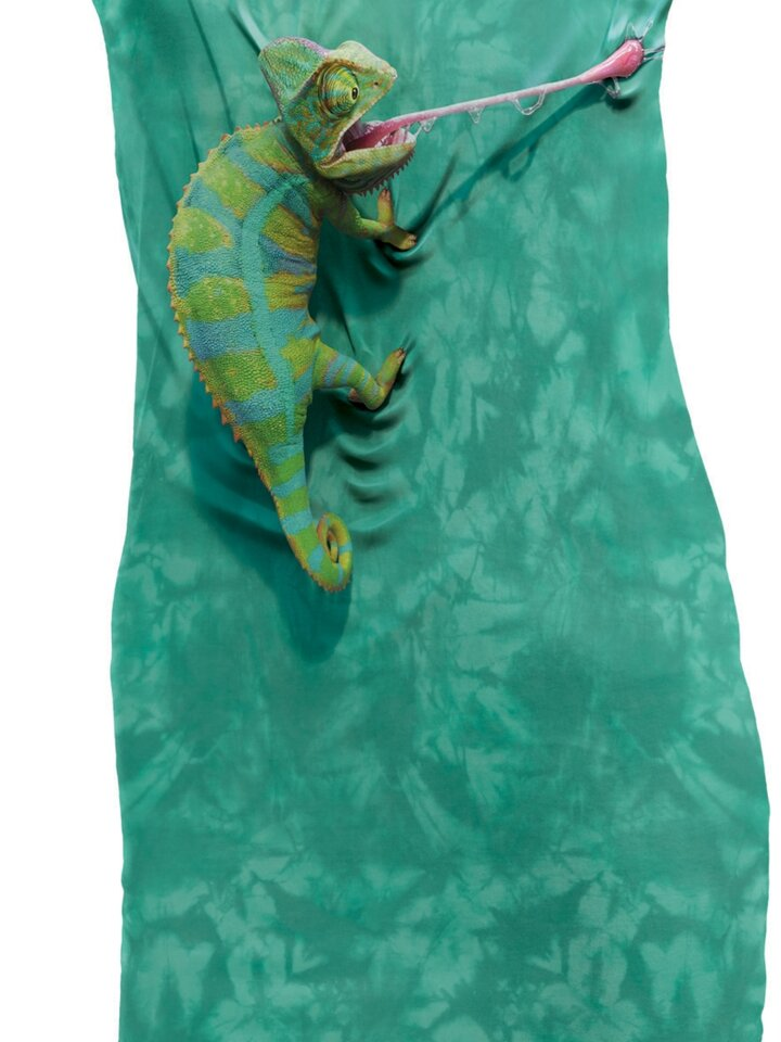 für ein vollkommenes und originelles Outfit Minikleid Chamäleon