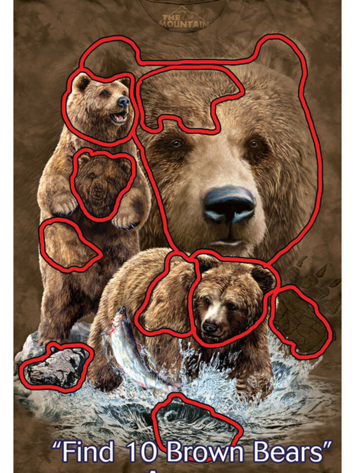 Reducerea Find 10 Brown Bears