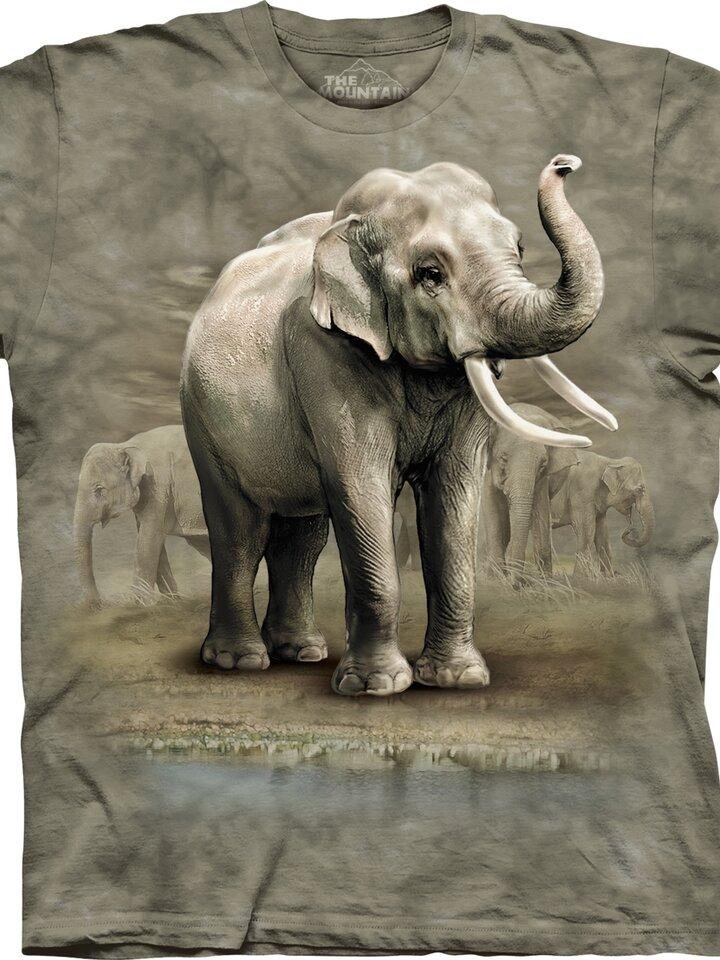 Lifestyle fotó Asian Elephants Child