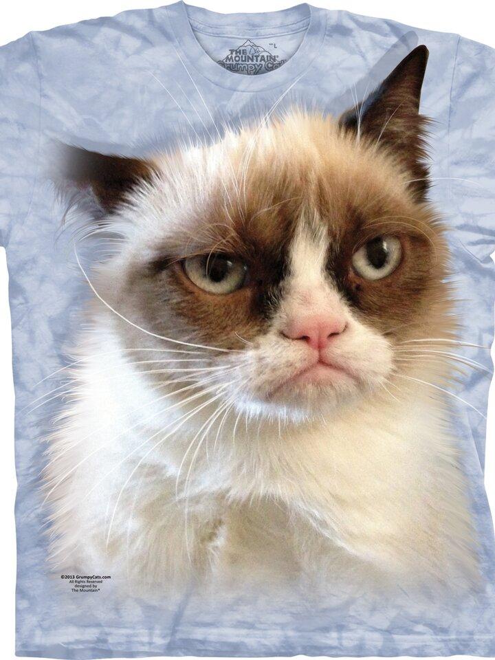 Lifestyle foto Kids' Blue T-shirt Grumpy Cat