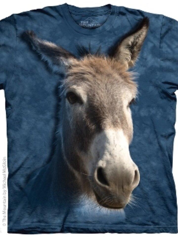 Foto Donkey  Child