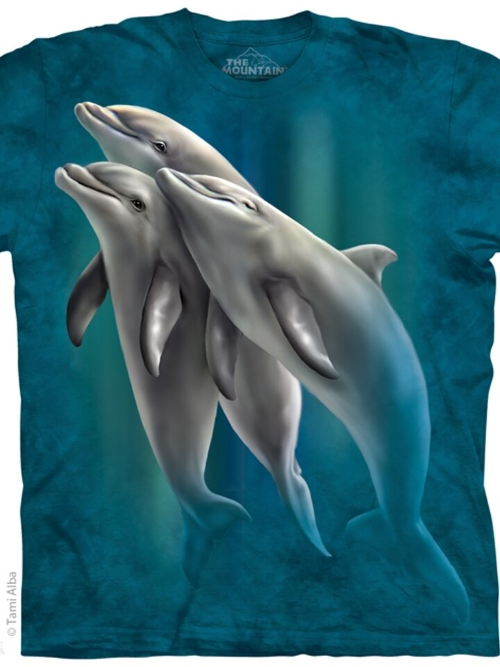 Lifestyle foto 3 Dolphins