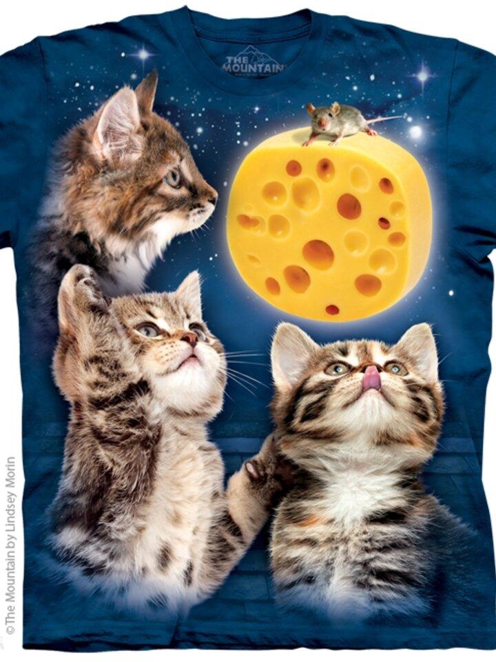 Tip na darček 3 Kitten Cheese Moon