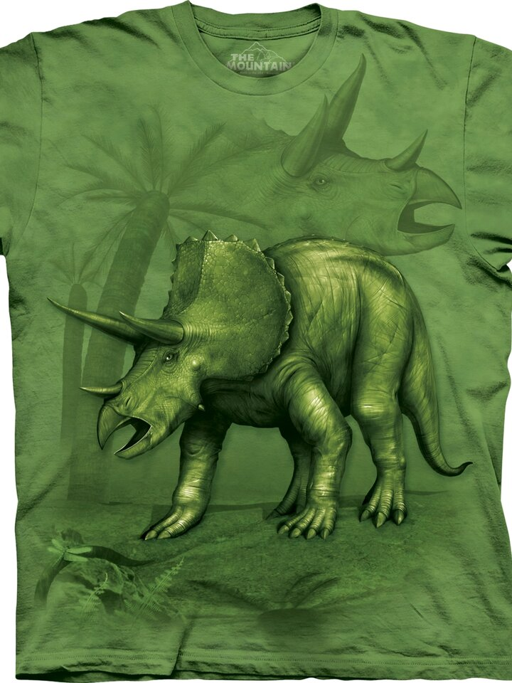 Lifestyle fotó Triceratops Child