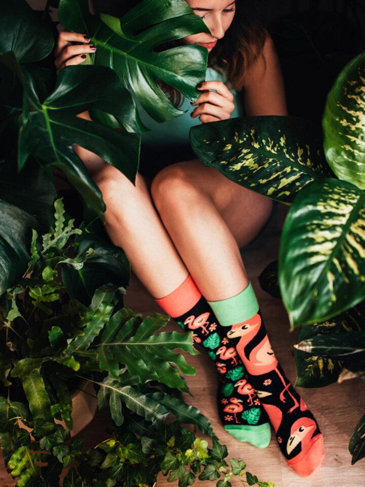 Výnimočný darček od Dedoles Veselé ponožky Plameniaky