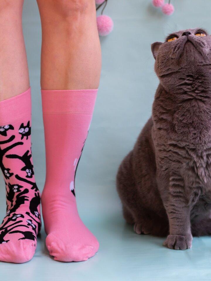 Výnimočný darček od Dedoles Veselé ponožky Ružové mačky