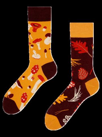 Lifestyle photo Regular Socks Mushrooms