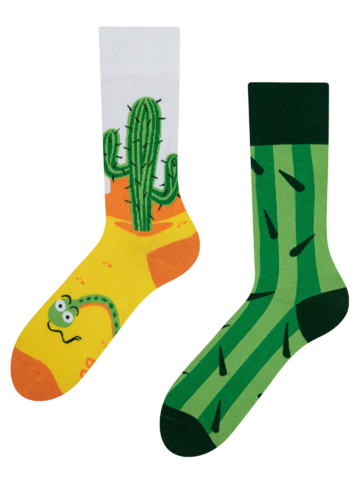 Lifestyle fotó Vidám zokni Kaktusz