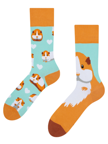Lifestyle foto Veselé ponožky Morče