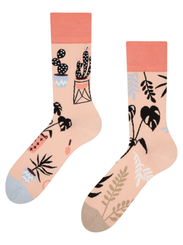Eredeti ajándék a Dedolestől Vidám zokni Szobanövények