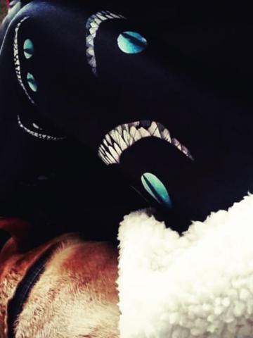 Výprodej Dámské sportovní elastické legíny Kočičí úsměv