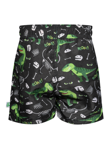 Looking for an original and unusual gift? The gifted person will surely surprise with Boys' Swim Shorts Tyrannosaurus Rex