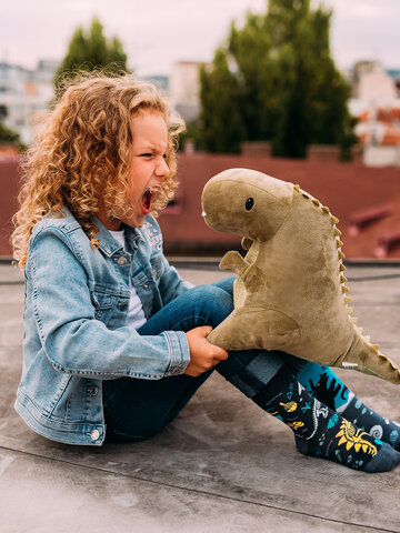Tip na darček Vrolijke kindersokken Dinosaurussen