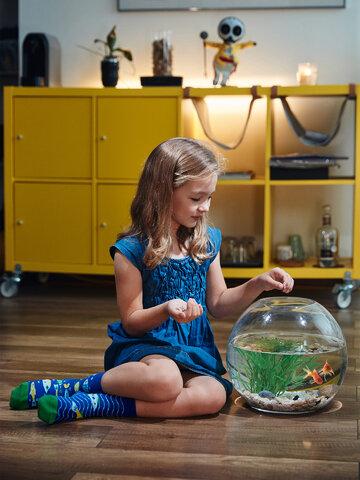 Lifestyle-Foto Lustige Kindersocken Aquariumfische