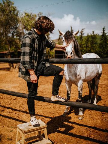 Potešte sa týmto kúskom Dedoles Živahne kratke nogavice Konji
